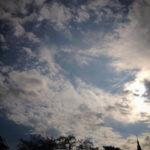 新宿御苑の空