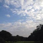 チビ雲いっぱい