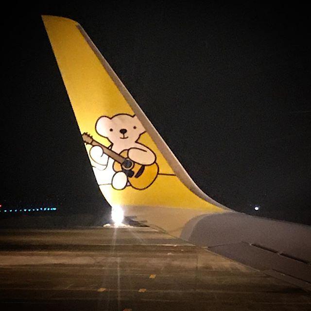 🛩冬休みももうすぐ終わりだ🥺 #北海道 #熊 #エアドゥ #ベアドゥ #airplane #AirDo #BearDo #hokkaido #travelersnotebook