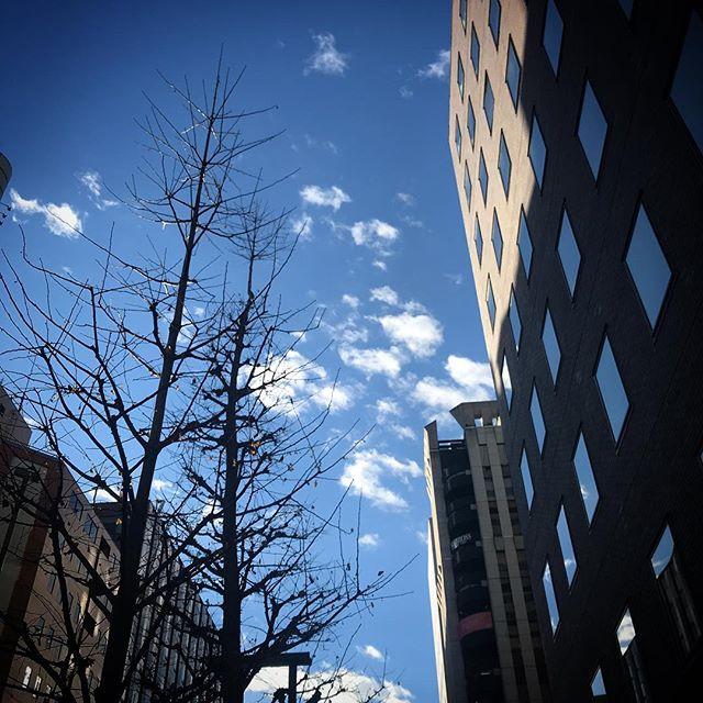いよいよ身辺にインフルエンザの魔の手が迫る!🌞カラッと晴れてるって事は乾燥して🦠ウィルスが活発になってるのよね️️️ #sky #clouds #shinjuku  #tokyo #空 #雲 #ソラ