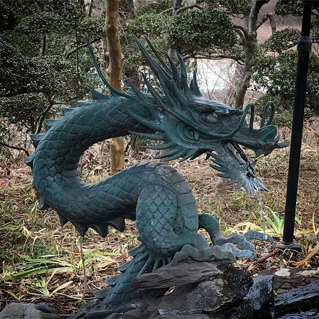 🐉 #dragon ⛩ #Shintoshrine #shrine #神社 #龍 #神社仏閣