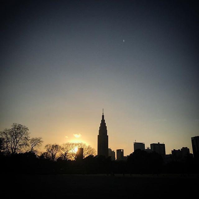 #sky #sunset #shinjuku  #tokyo #shinjukugyoen #新宿御苑 #空 #ソラ #イマソラ #ゆうやけ