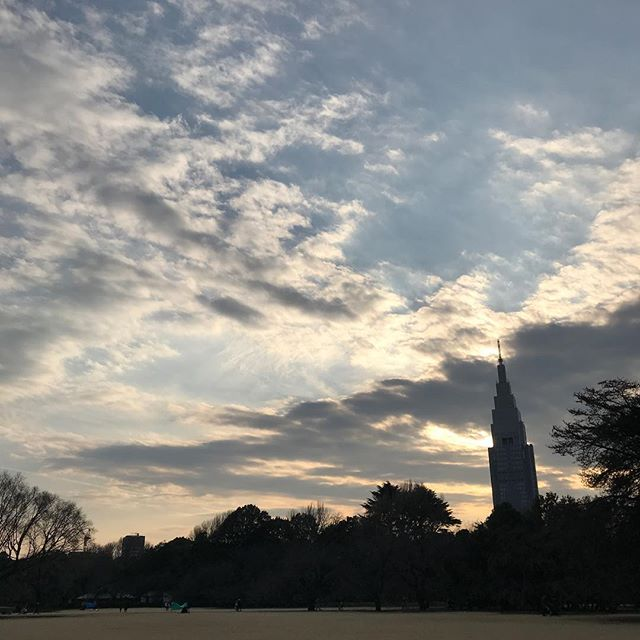 ️いつかのゆうひ️ #sky #clouds #sunset #shinjuku  #tokyo #shinjukugyoen #新宿御苑 #空 #雲 #ソラ #イマソラ #ゆうやけ