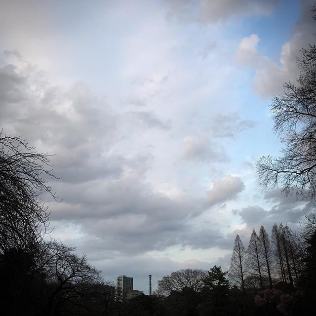 ️️️ #sky #clouds #shinjuku #tokyo #空 #雲 #ソラ