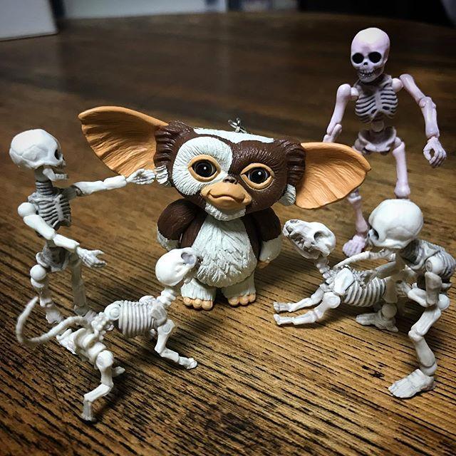 お友達が増えた! #Gizmo #Mogwai #Gremlins #poseskeleton #skeleton #skeletondog#skeletoncat #ギズモ #モグワイ #グレムリン #謎生物 #ポーズスケルトン #リーメント