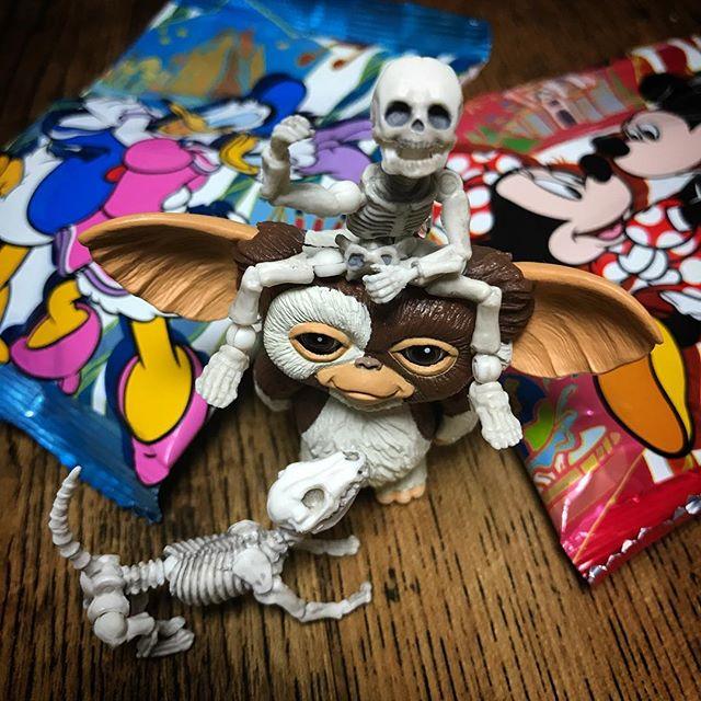 ねずみ〜ランドのお土産もらった!今日のおやつDEATH!☠️ #Gizmo #Mogwai #Gremlins #poseskeleton #skeleton #ギズモ #モグワイ #グレムリン #謎生物 #ポーズスケルトン #リーメント #ディズニーお土産