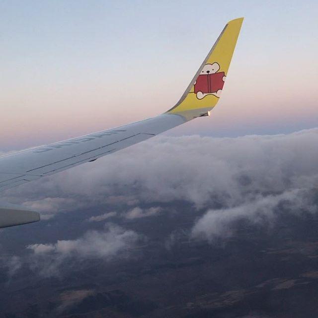 ️️️️ #sky #clouds #sunset #airplane #AirDo #BearDo!  #hokkaido #北海道 #空 #雲 #ソラ #ゆうやけ #ベアドゥ