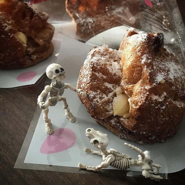 今日のおやつDEATH!☠️ #poseskeleton #skeleton #skeletondog #yummy #sweets #ポーズスケルトン #リーメント #パティスリーノノン #シュークリーム