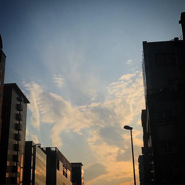 ️いつかの夕陽🦄 #sky #clouds #sunset #shinjuku  #tokyo #空 #雲 #ソラ #ゆうやけ