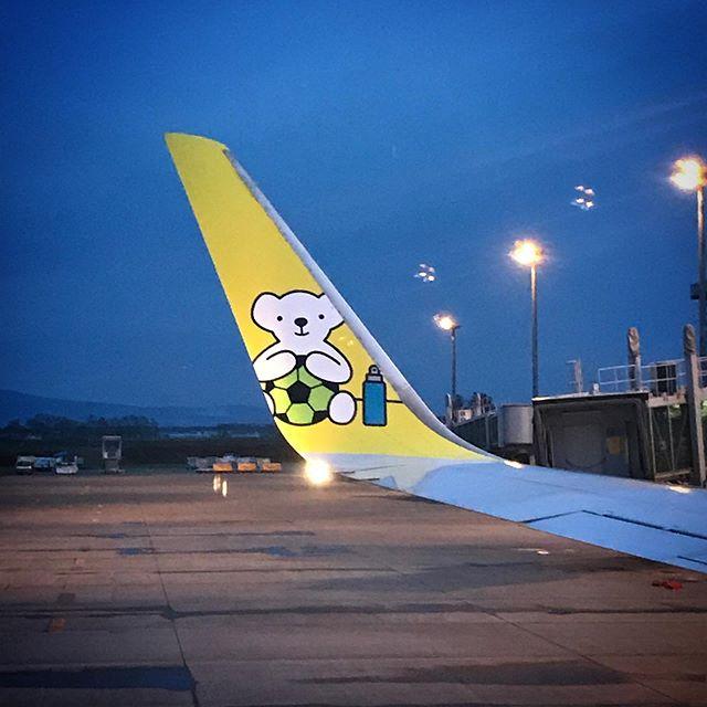 帰りのBearDo!ちゃんはサッカーバージョン️#sky #airplane #AirDo #BearDo #hokkaido #ベアドゥ #エアドゥ #北海道 #イマソラ #空