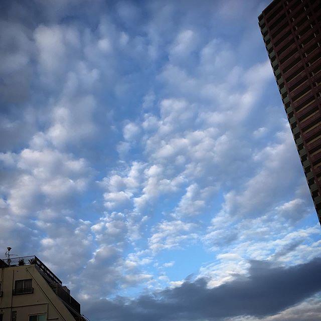 いつかのそら️️️ #sky #clouds #shinjuku  #tokyo #空 #雲 #ソラ