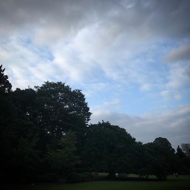 ️🌲️🌳️ #sky #clouds #shinjuku #shinjukugyoen  #tokyo #新宿御苑 #空 #雲 #ソラ #イマソラ