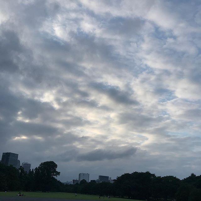 ️️️ #sky #clouds #shinjuku #shinjukugyoen  #tokyo #新宿御苑 #空 #雲 #ソラ #イマソラ