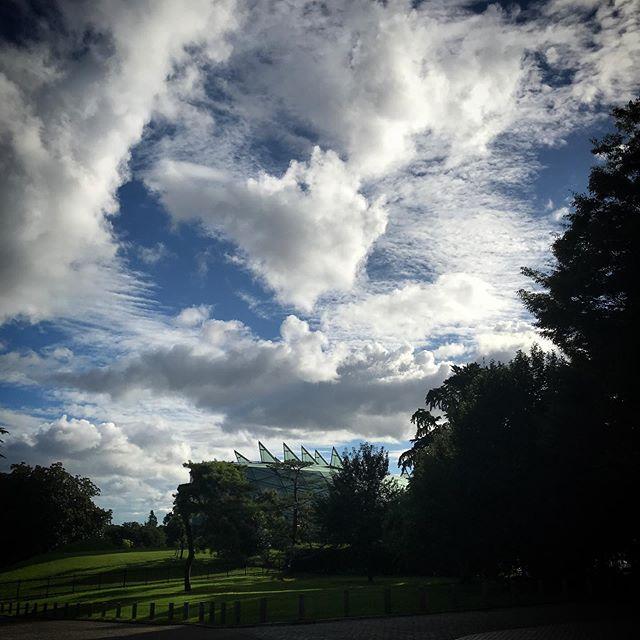 ️なにかが️渦巻いてる感️ #sky #clouds #shinjuku #shinjukugyoen  #tokyo #新宿御苑 #空 #雲 #ソラ #イマソラ