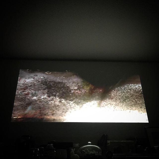 movie time🍿 The Dark Knight Trilogy 🦇🦇🦇地味に秋のクリスチャン・ベール祭開催してたんだけど、連休中にうっかり3部作を観てしまったなんか変な役者だよね。良い意味で!🏼そして何だかティム・バートン版🦇と内容がごっちゃになっていたのでそっちもまた観てみたいお気持ちDEATH!☠️ #movie #cinema #film #hometheater #batman #darkknight #ChristopherNolan #ChristianBale