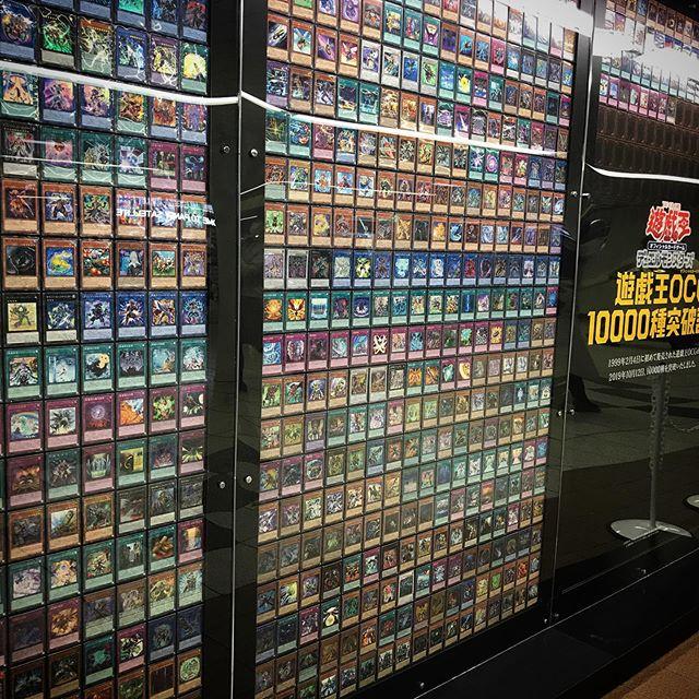 大きなお友達がたくさんいたドリームウォール #遊戯王 #遊戯王カード #新宿 #shinjuku #tokyo #YU-GI-OH!