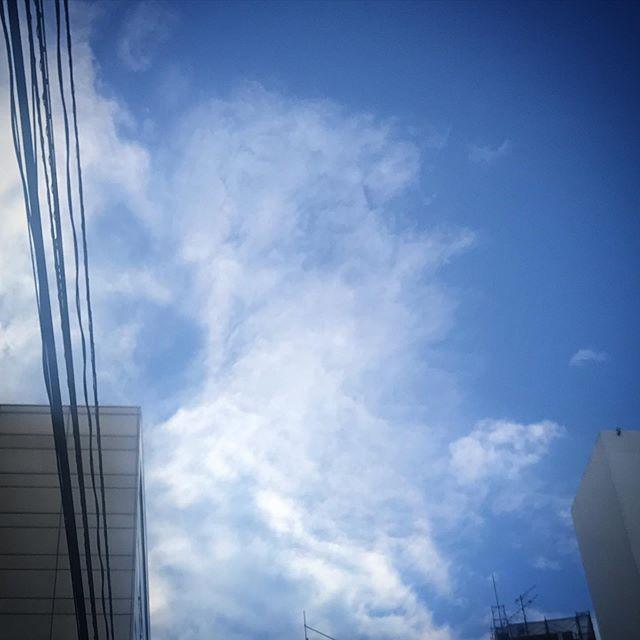 ️️️なんかこんなの🦢いない? #sky #clouds #空 #雲 #ソラ #今朝空