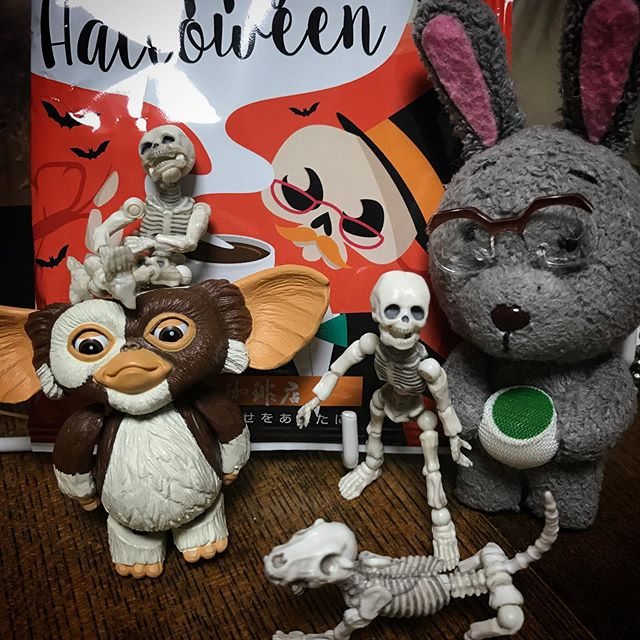 ️ハロウィンブレンド美味しかったDEATH!☠️ #Gizmo #Mogwai #Gremlins #poseskeleton #skeleton #skeletondog #usaji  #ギズモ #モグワイ #グレムリン #謎生物 #ポーズスケルトン #リーメント #うさじい