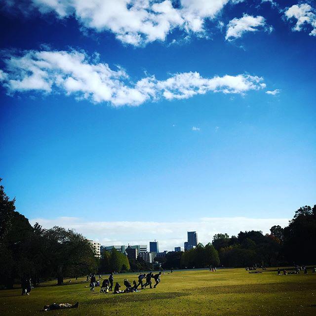 ️️️ #sky #clouds #shinjuku #shinjukugyoen #tokyo #空 #雲 #ソラ #いつかの空 #新宿御苑