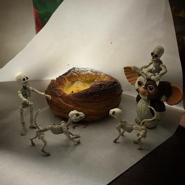 🥐クロワッサン専門店サクサクじゃ〜☠️ #poseskeleton #skeleton #skeletondog #skeletoncat  #Gizmo #Mogwai #ポーズスケルトン #リーメント #sweets #yummy