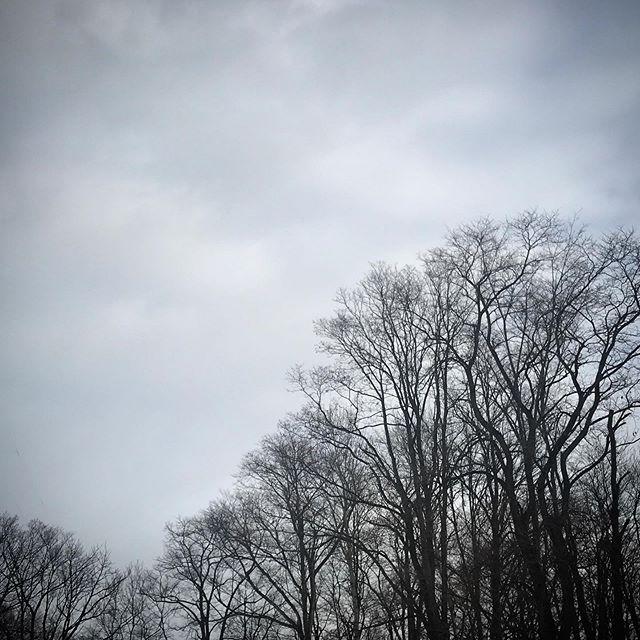 ️️️ #sky #clouds #hokkaido #北海道 #空 #雲 #ソラ #けさそら
