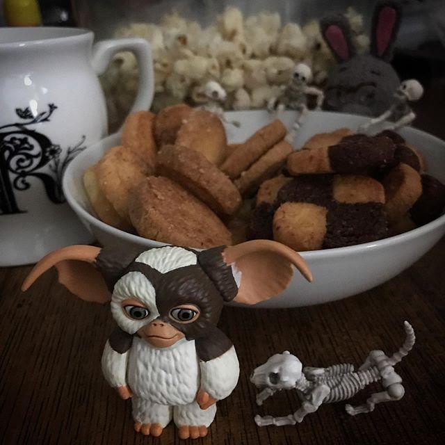 美味しいクッキーもらったよ〜️🍿#Gizmo #Mogwai #Gremlins #poseskeleton #skeleton #skeletondog #skeletoncat #usaji #homecafe #popcorn #cookie #ギズモ #モグワイ #グレムリン #謎生物 #ポーズスケルトン #リーメント #うさじい