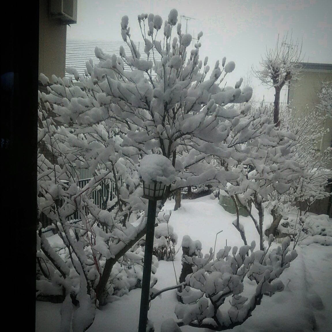 本日の北海道。️☃️#stayhome #hokkaido #sky #snow